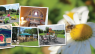 Welcome To Wildflower Glamping