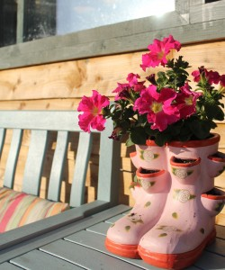 Pretty in Pink Flowers Nature Shot - Wildflower Glamping, Cavan @ www.wildflowerglamping.ie